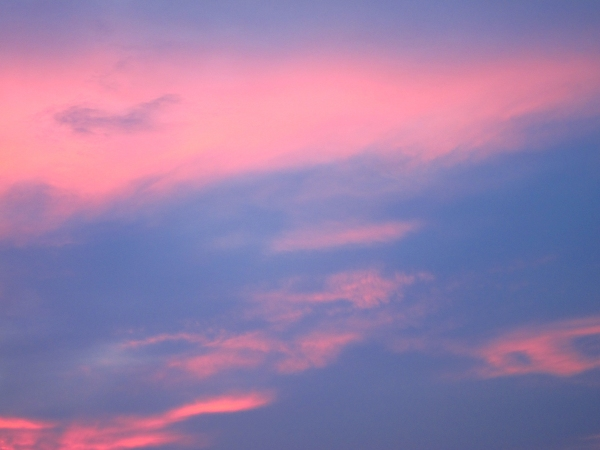 Day 111 - Pink and Purple Skies